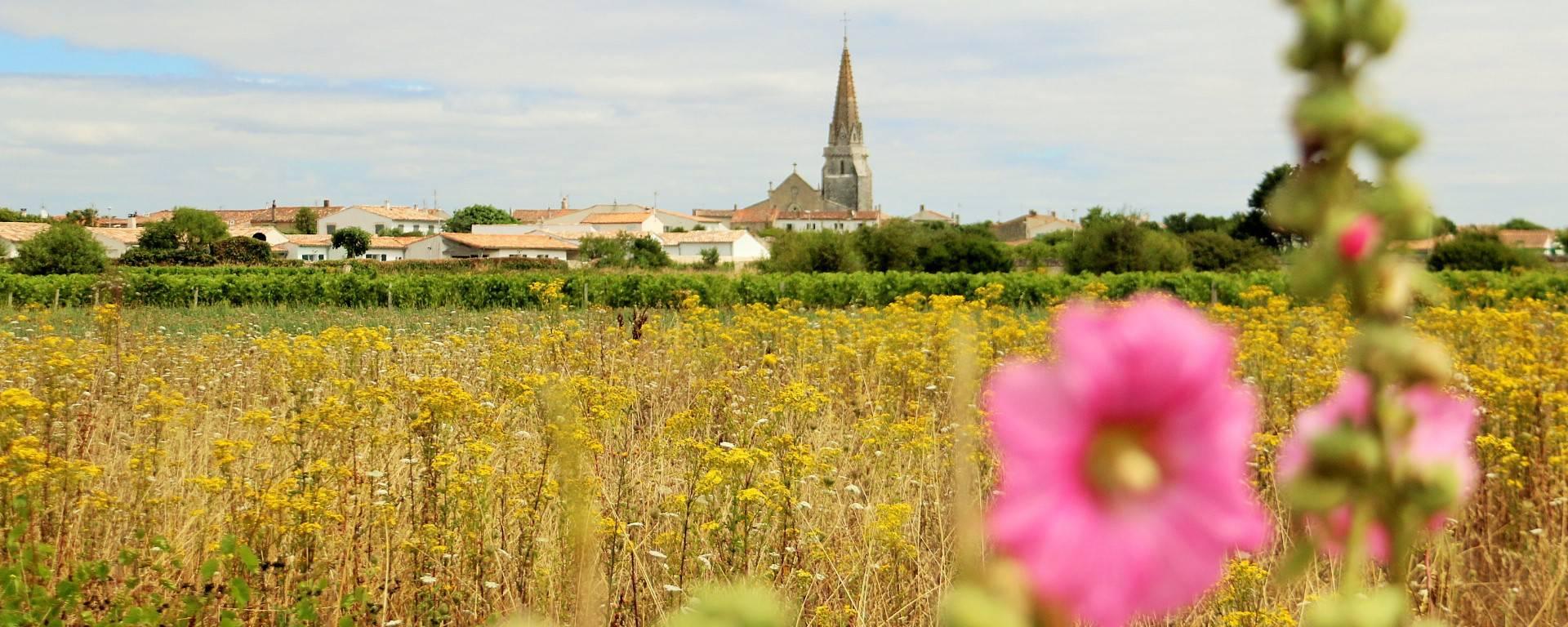 Sainte-Marie-de-Ré