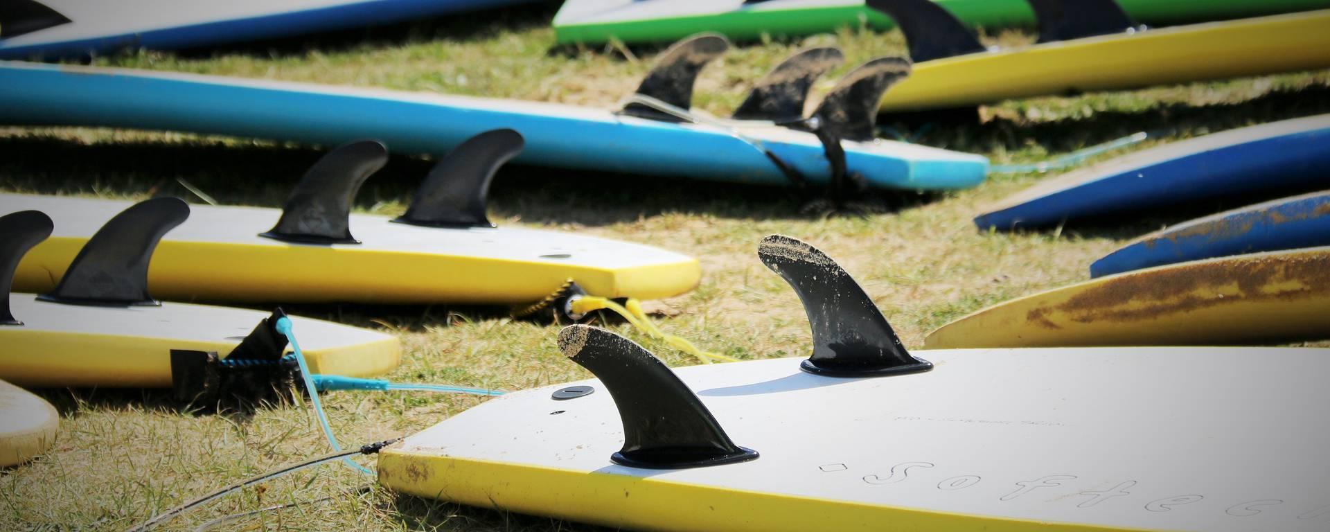 Cours de surf sur la plage par Lesley Williamson
