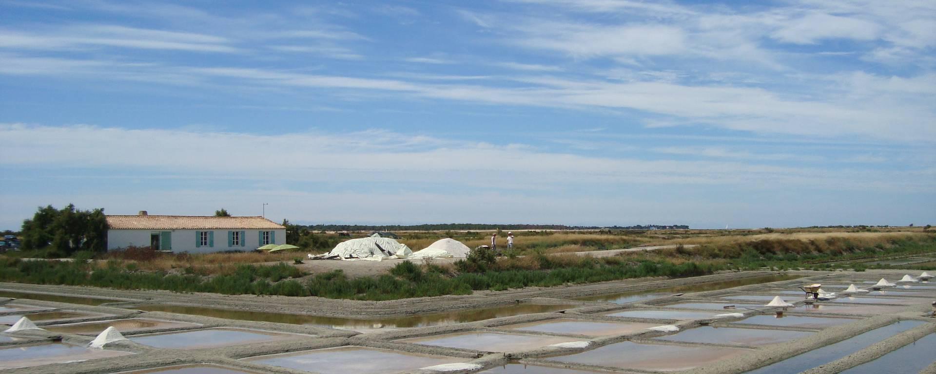 Ecomusée du marais salant, l'histoire de la saliculture et des marais par S.Nadouce