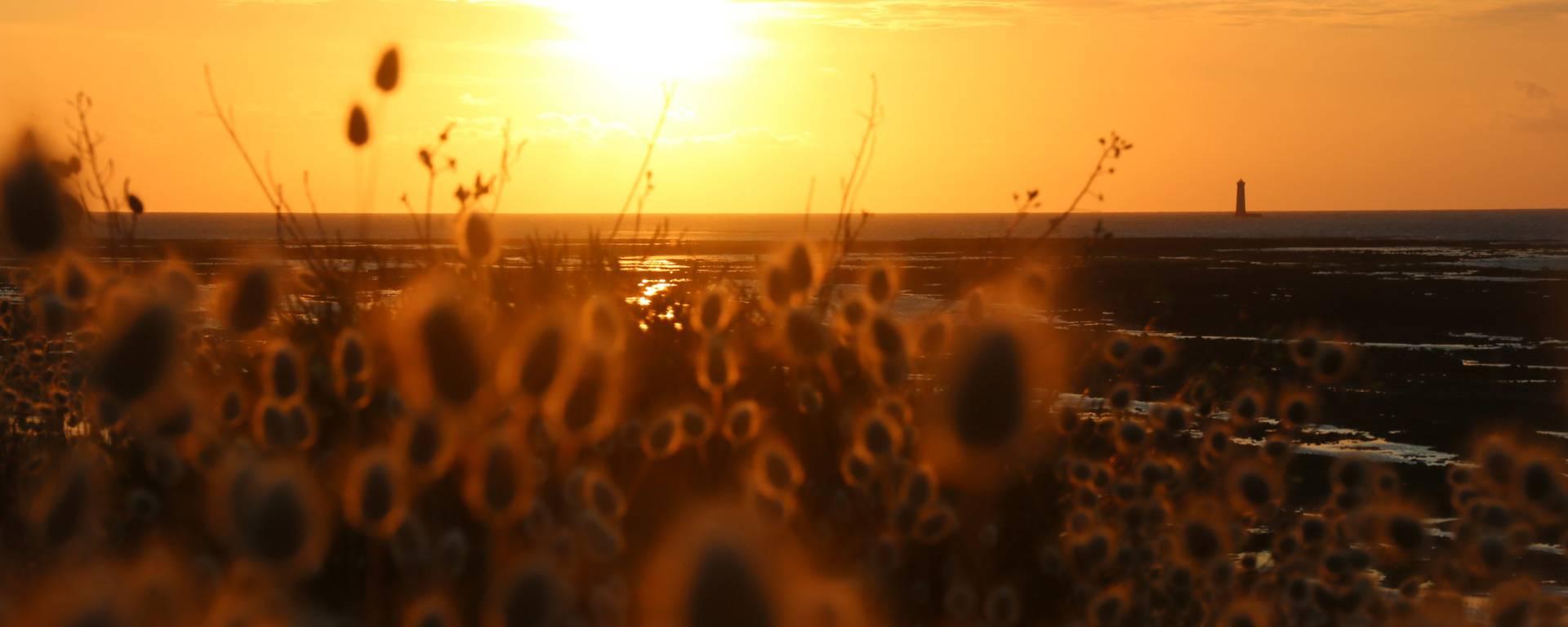 Coucher de soleil phare des baleines par lesley Williamson