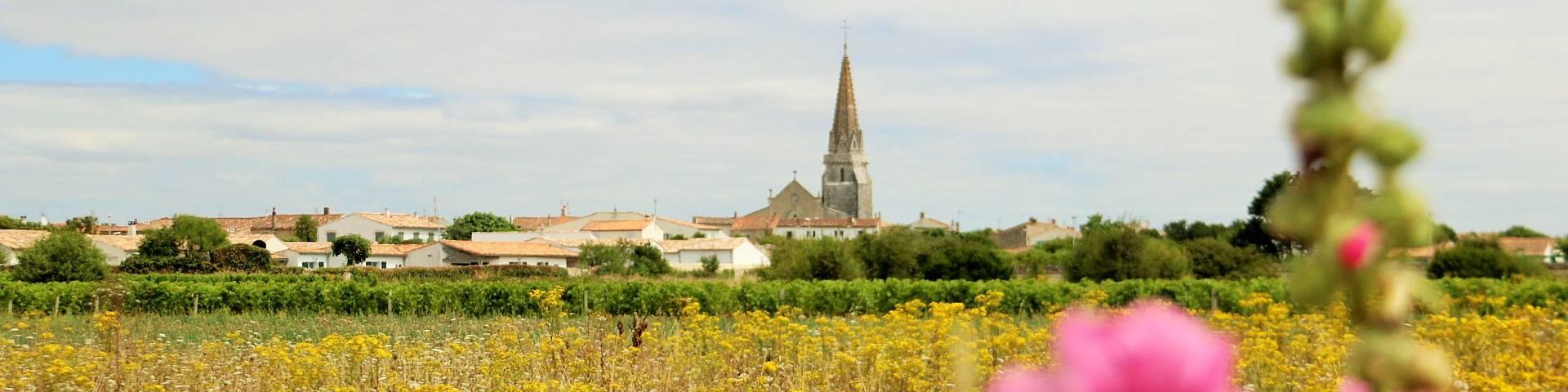 Le village de Sainte-Marie-de-Ré