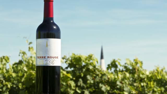 Le vin de l'Ile de Ré par Yann Werdefroy