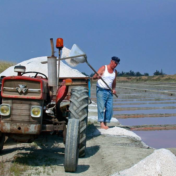 Saunier récolte le sel de l'Ile de Ré ©François Blanchard