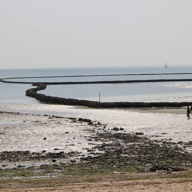 Ecluse à poissons ©SPL Destination Ile de Ré