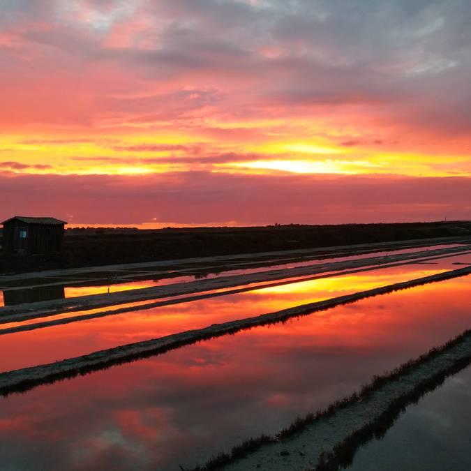 Les marais salants de Loix au coucher de soleil